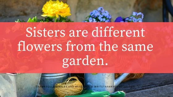 sisters are different flowers from the same garden