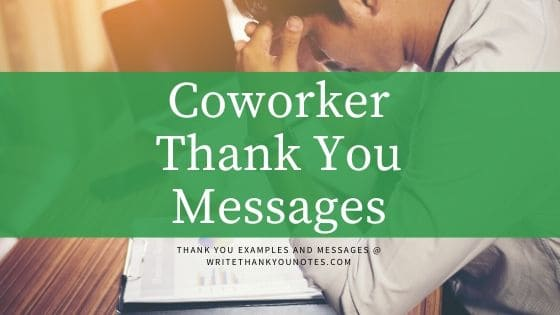 Appreciation Letter To Coworker Sample from www.writethankyounotes.com